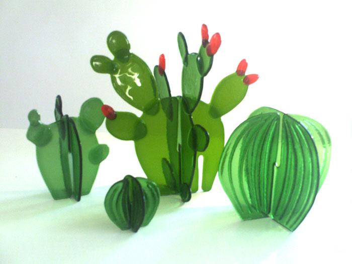 cactusbunch1